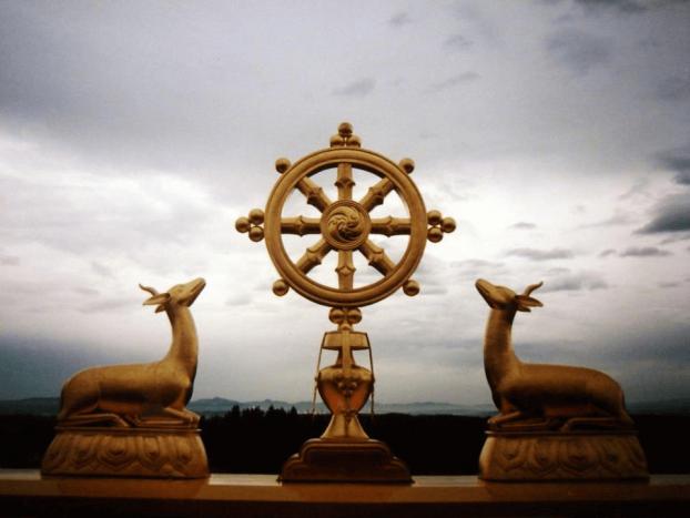 kolo-dharma