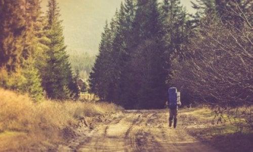 Spacer ścieżką