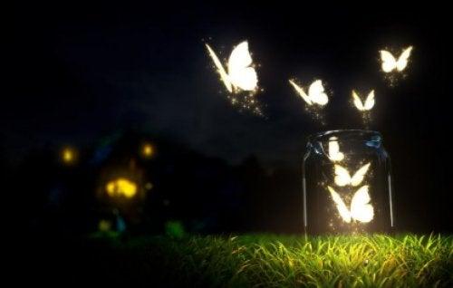 Motyle nocą
