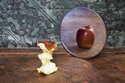 Ogryzek jabłka