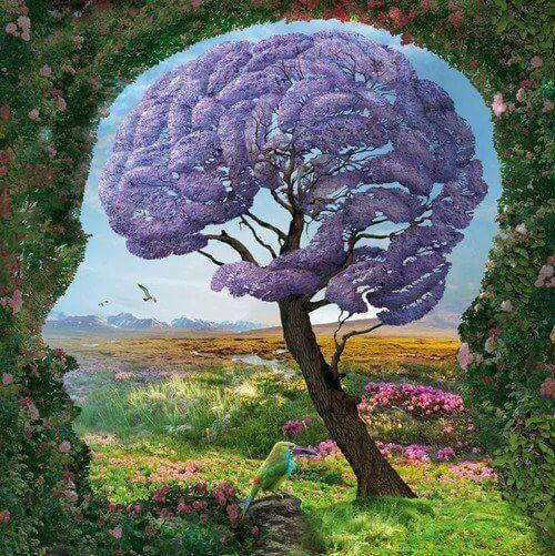 Drzewo, z koroną w kształcie mózgu