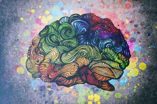 Inteligencja - odkryj jej 8 rodzajów