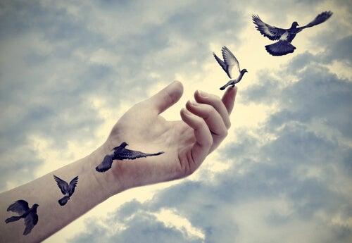 Ptaki wylatujące z dłoni - wolność