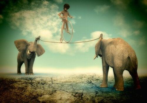 Chłopiec jadący rowerem po linie trzymanej przez słonie