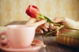 róża - Kocham Cię