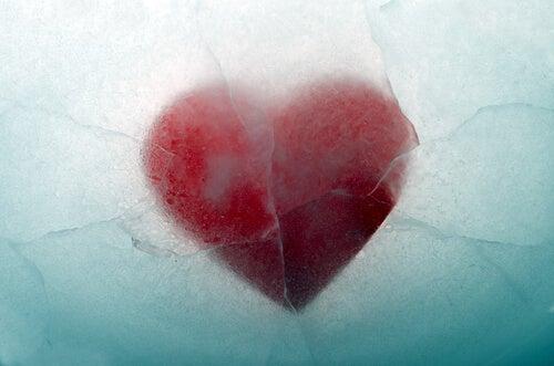 serce z lodu
