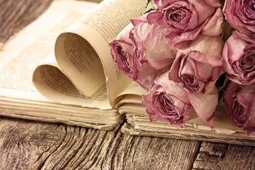 książka i róże