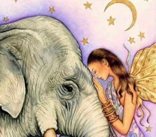 Wróżka i słoń