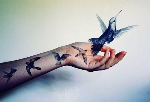 Ptaki wylatujące z ręki