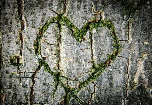 Serce na skale