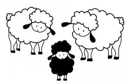 Czarna owca z białymi