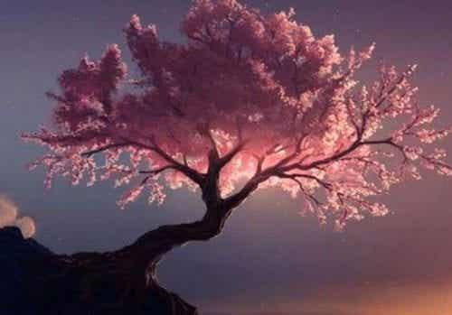 Lecznicze drzewa według Tao - siła natury