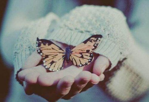 Motyl na ręce