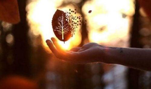 Życzliwość to najlepsza odpowiedź na okrucieństwo