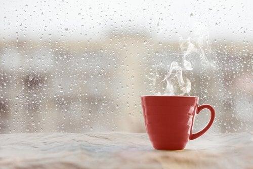 Kubek gorącej herbaty przy oknie w deszczowy dzień