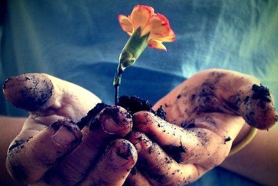 Kwiat wyrastający z dłoni.