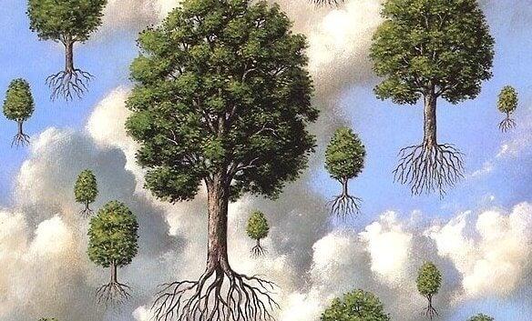 Drzewa z korzeniami unoszące się w powietrzu.