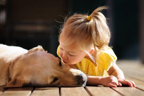 dziewczynka całuje psa