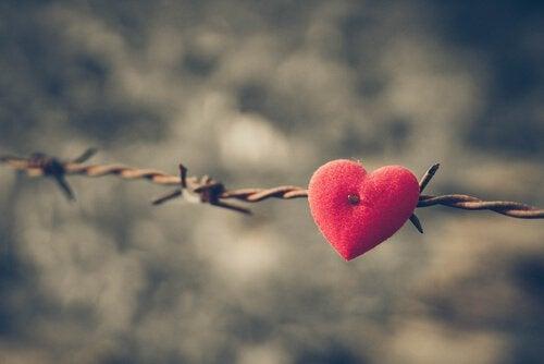 Serce z filcu w drucie kolczastym