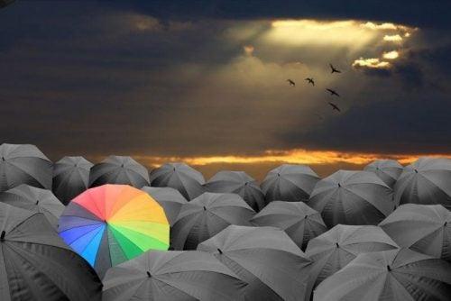 Kolorowy parasol wśród czarnych