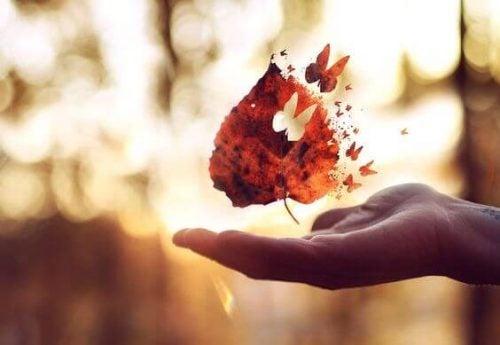 Liść na dłoni składający się z motyli