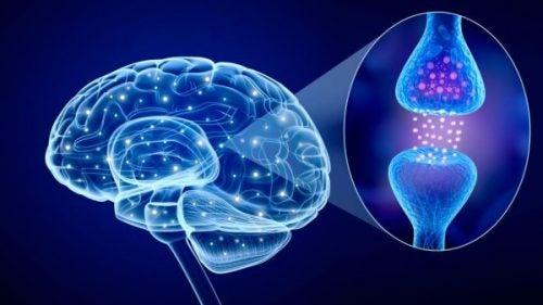 Neuroprzekaźniki