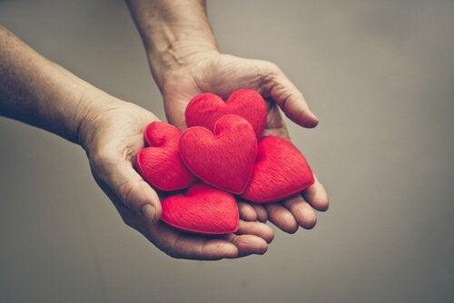 Czerwone pluszowe serca w dłoniach