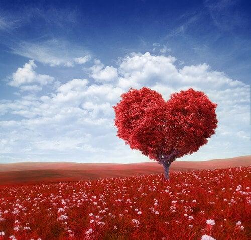 Drzewo w kształcie serca