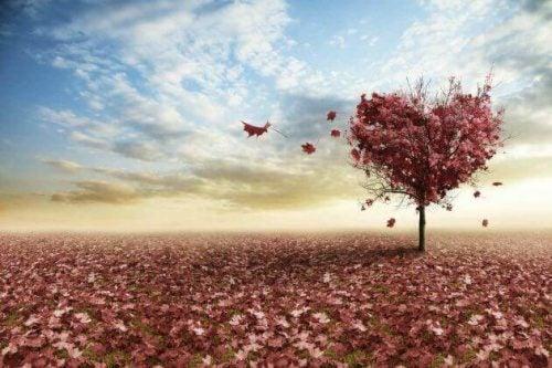 Serce z jesiennych liści