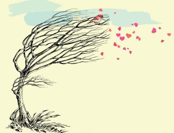 Drzewo zrzuca liście w kształcie serc.