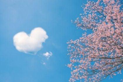 Chińskie przysłowia o miłości – 5 najpiękniejszych i najmądrzejszych