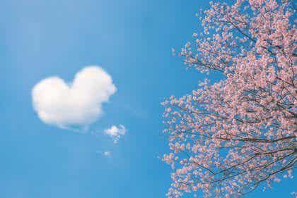 Chińskie przysłowia o miłości - 5 najpiękniejszych i najmądrzejszych
