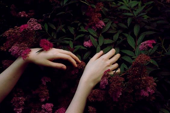 Dłonie na kwiatach.