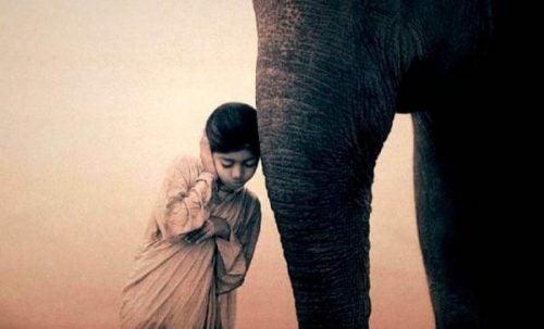 Dziewczynka i słoń