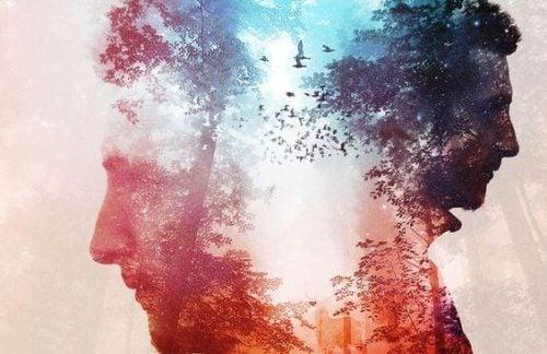 Sylwetka mężczyzny na tle drzewa