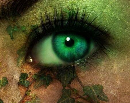Zielone oko.