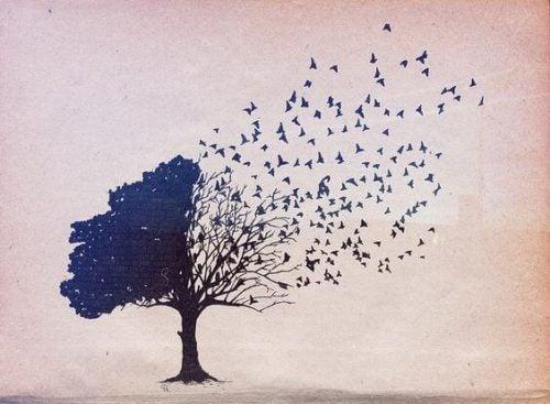 Drzewo dmuchawiec - rozwiń skrzydła