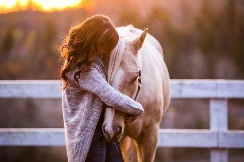 Dziewczyna przytula konia