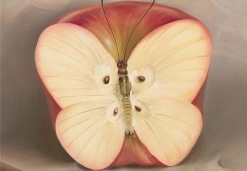Jabłko - motyl
