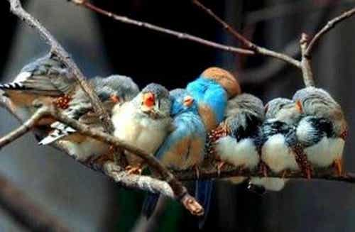 Cudowni ludzie - otaczają Cię, ponieważ na to zasługujesz