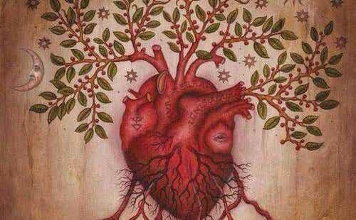 Nasze uczucia - nauczmy się je rozumieć