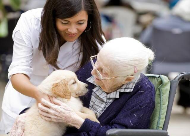 Starsza kobieta z psem.
