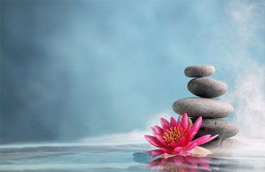 Trening uważności - kamienie i kwiat lotosu.
