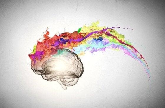 Kolorowy mózg.