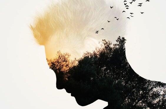 Mężczyzna-las, z którego głowy wylatują ptaki.