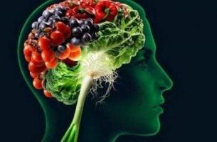 Produkty spożywcze a nasza pamięć.