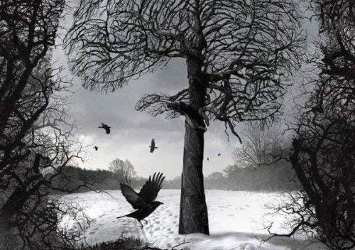 Pustka - kruk i drzewa