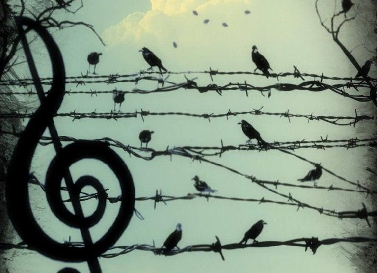 Śpiewające ptaki - zaangażowanie