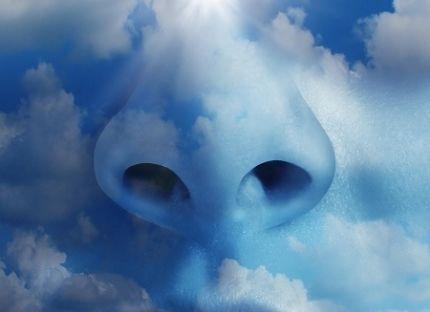 Wielki nos w chmurach.