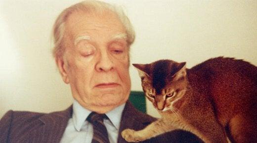 Borges i kot.